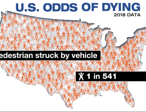 When Did Americans Become So Risk-Averse?